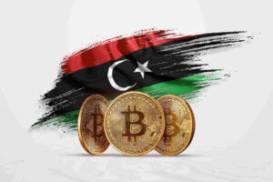 Invest Libya - Libya Investments