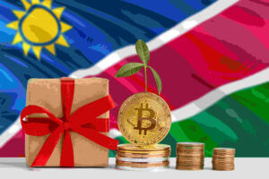Invest Namibia - Namibia Investments