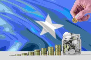 Invest Somalia - Somalia Investments
