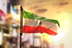 Invest Somaliland - Somaliland Investments